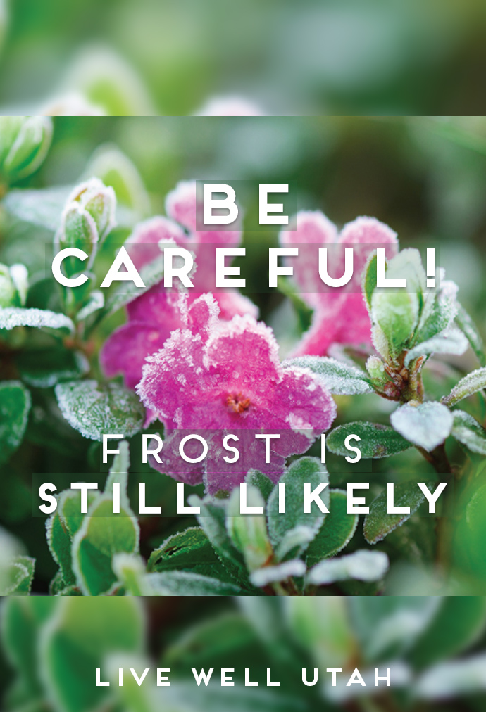 Frost Still Likely